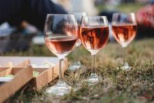 The second wine festival In vino veritas will take place in Koktebel at the end of July