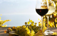 In the Crimea, recreated the wine of the times of King Vladimir