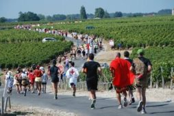 Registration started for a wine race in France