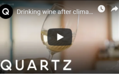 Drinking wine after climate change means a chance to drink rare bottles