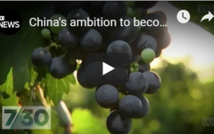 China's ambition to become the world's biggest wine maker