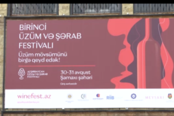 The opening ceremony of the 1st Azerbaijan grape and wine festival took place in Shamakhi