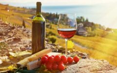 The Republic of Moldova was included in the top of the best wine tourism destinations